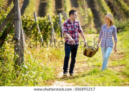 Happy couple in huge vineyard at harvest time - stock photo