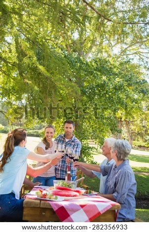 Happy couple toasting with their family on a sunny day - stock photo