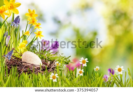 Happy Easter Card or Advertising with eggs, decorative nest and beautiful daisies in an illustrative flower arrangement with blurry nature background - stock photo