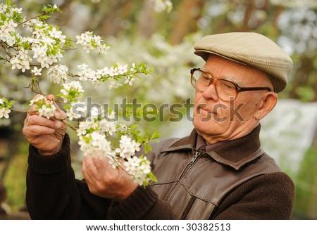 Happy elderly man in a garden - stock photo