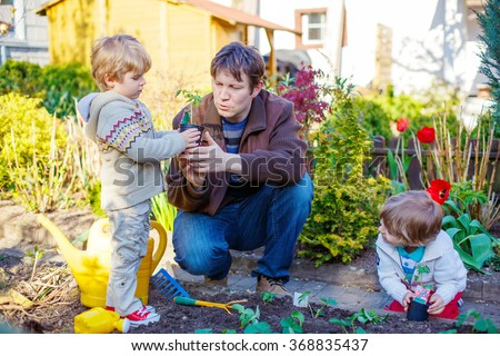 Happy family of three: Two little kids boys and dad planting seeds and seedlings in vegetable garden, outdoors. Man and sons, twins having fun with gardening in spring. - stock photo