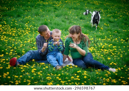 happy family on a picnic in a meadow - stock photo