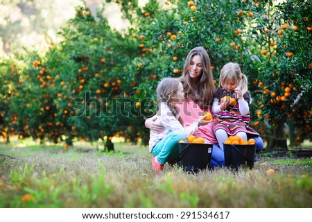 happy family picking fresh organic fruits on a farm - stock photo