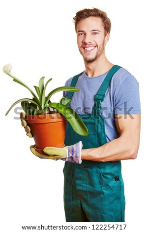 Happy gardener holding a paintbrush plant (Haemanthus albiflos) - stock photo