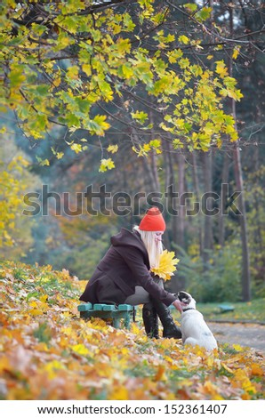 Happy girl playing with a dog in the autumn park - stock photo