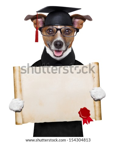 happy graduate dog holding a big diploma - stock photo