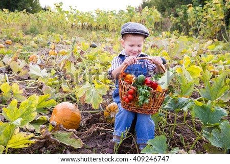 Happy kid sitting on pumpkin's field with basket of vegetables - stock photo