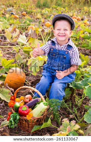 Happy kid sitting on pumpkin's field with basket of vegetables and signing thumbs up - stock photo