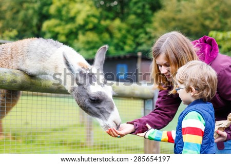 Happy little blond kid boy and his mother feeding big lama on an animal farm. Warm summer day. Active family leisure with children outdoors. - stock photo