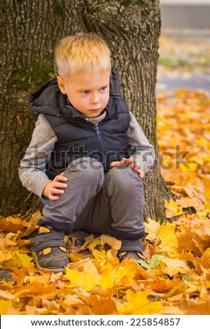 Happy little boy playing with autumn leaves in the woods.Little boy screaming while holding leaves in the park. Little boy siting on the yellow leaves in the autumn park - stock photo