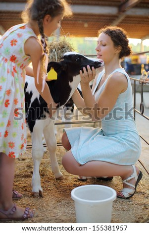 Happy little girl and her mother caress calf at cow farm at sunny day. Focus on calf and woman. - stock photo
