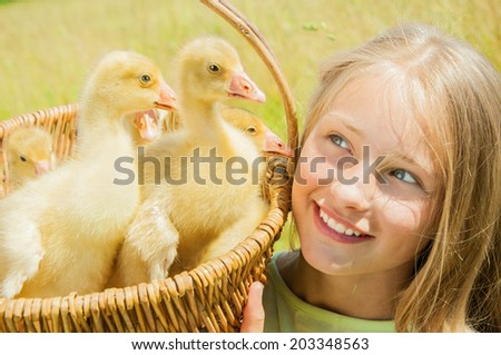 Happy little girl holding the basket of goslings - stock photo