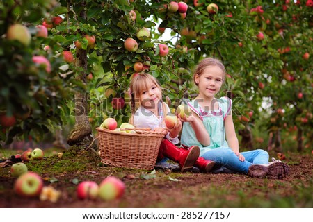 Happy little girls picking fresh organic apples on a farm - stock photo