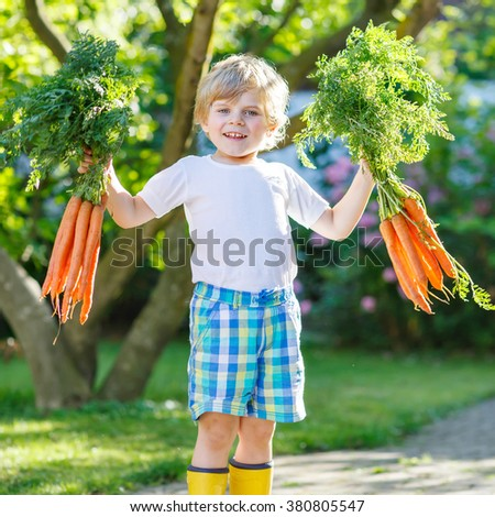 Happy little kid boy with carrots in domestic garden. Child gardening and eating outdoors. Healthy organic vegetables for kids - stock photo