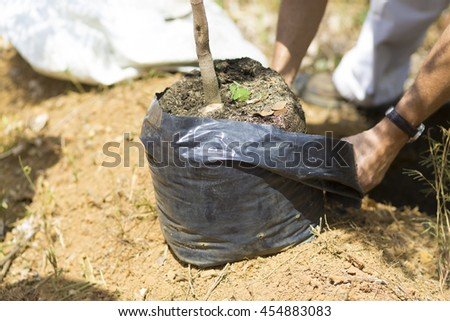 Happy Man digs a hole to planting - stock photo