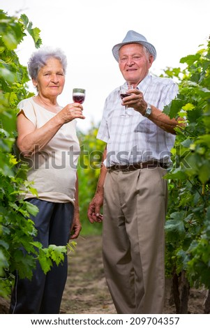 Happy mature couple - senior people (man and woman) - drinking wine - stock photo
