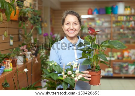Happy mature woman chooses anthurium in pot at flower shop - stock photo