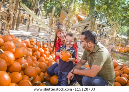 Happy Mixed Race Family Picking Pumpkins at the Pumpkin Patch. - stock photo