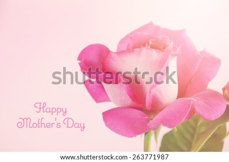 Happy Mothers Day gift of a single pink rose with sample text, and applied retro vintage style filters and added lens flare. - stock photo