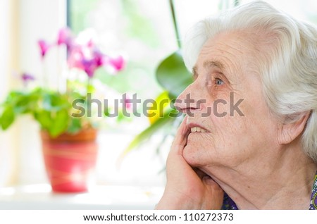 Happy old gray-haired woman - stock photo