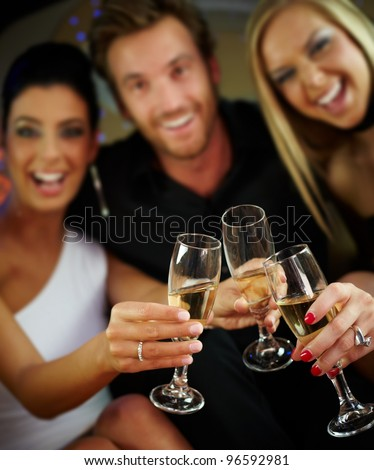 Happy people clinking glasses, celebrating, having fun.? - stock photo