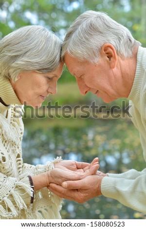 Happy senior couple in autumn birch forest - stock photo