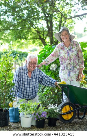 Happy senior woman standing by husband with potted plants in garden - stock photo
