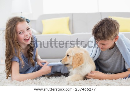 Happy siblings playing with puppy on rug at home - stock photo