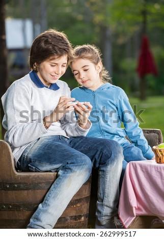 Happy siblings using smartphone at campsite - stock photo