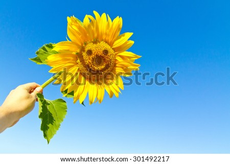 Happy sunflower in the hand with funny face - stock photo
