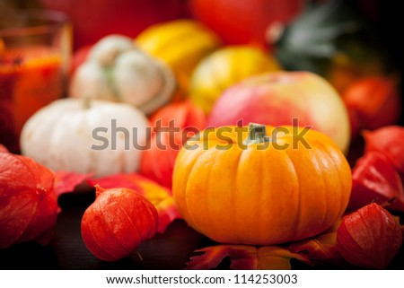 Happy Thanksgiving - pumpkins and apples for Thanksgiving - stock photo