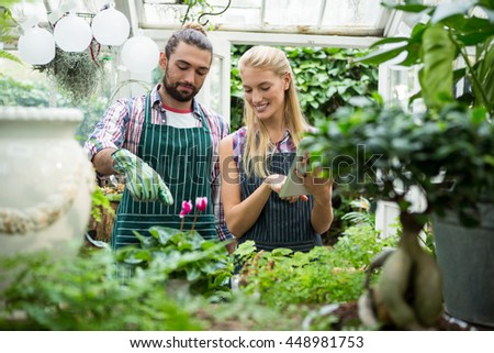Happy young colleagues working at greenhouse - stock photo
