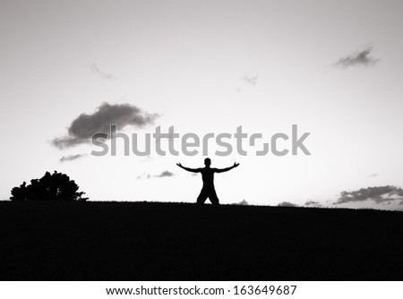 Happy young man enjoying the view. Freedom concept. - stock photo