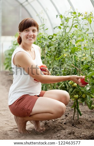 Happy young woman with tomato harvest in hothouse - stock photo