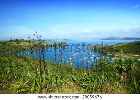 Harbour of Waiheke island, New Zealand - stock photo
