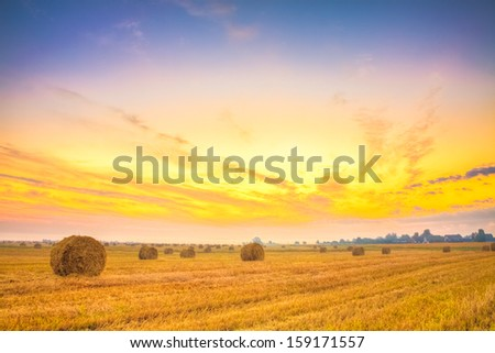 Harvest concept . Sunrise field, hay bale in Belarus. Sunset, HDR - stock photo