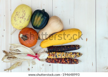 Harvest decoration for Thanksgiving with pumpkin, squash, corn - stock photo