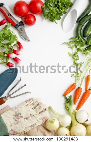 Harvest home garden - stock photo