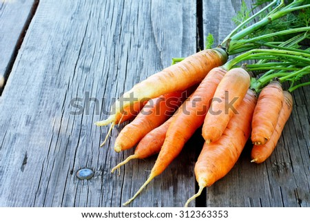 Harvest of fresh carrots on a wooden background - stock photo