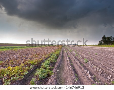 Harvested Field in Stormy Weather with Dark Threatening Sky - stock photo
