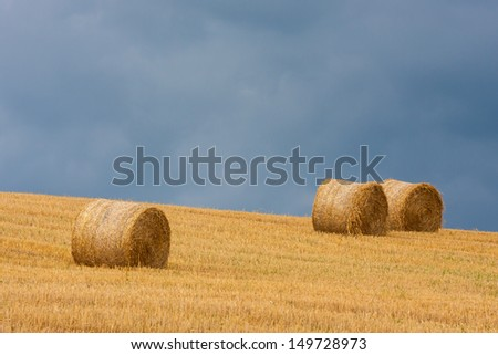 Harvested field with straw rolls - stock photo
