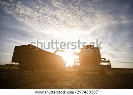 Harvester loading truck with beautiful sunflare  NOTE models are unknown and there are no visible trademarks - stock photo