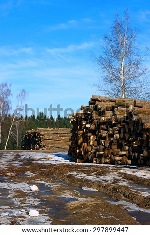 Harvesting timber logs in a forest in Russia in winter - stock photo