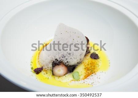 Haute cuisine dish of octopus with olive oil and sea bubbles  - stock photo
