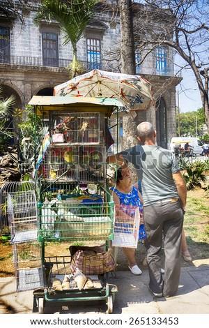 HAVANA, CUBA - MARCH 22, 2015 - Street vendors selling birds in Viejo Havana (Old Havana). - stock photo