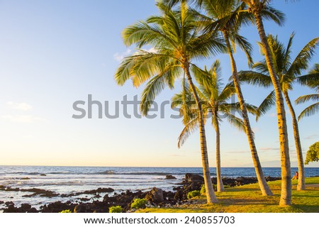 hawaian beach at sunset time - stock photo