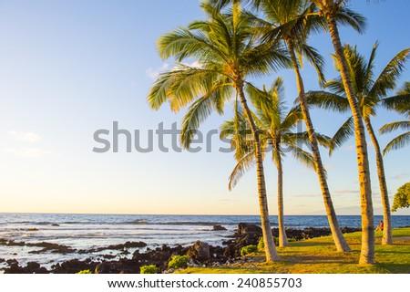 hawaian beach at sunset time - stock photo