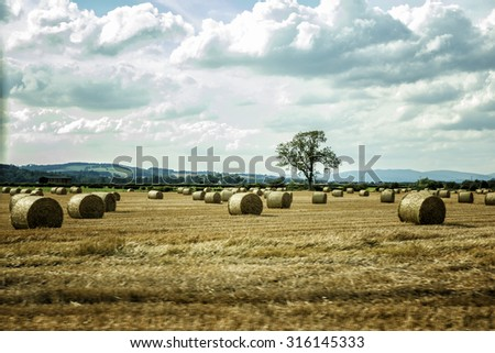 Hay Bails in a field - stock photo
