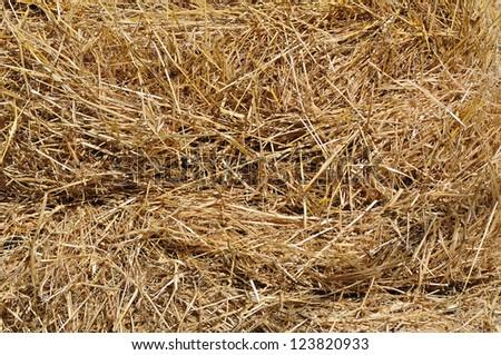 Hay bale background - stock photo