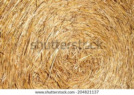 Hay bale detail - stock photo